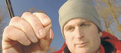 Žvejyba negyva musės lerva