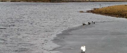 Kelmė - Kražantės upė
